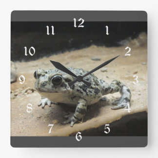 Toad Square Wall Clock