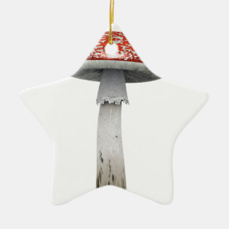 Toad Stool Double-Sided Star Ceramic Christmas Ornament