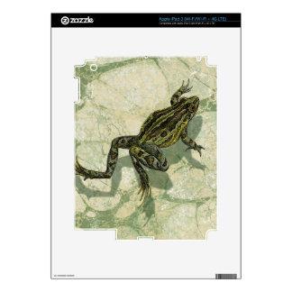 Toad Swinning in the Water iPad 3 Decal