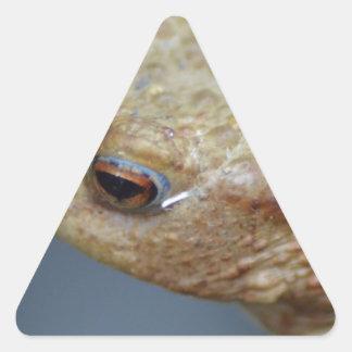Toad Triangle Sticker