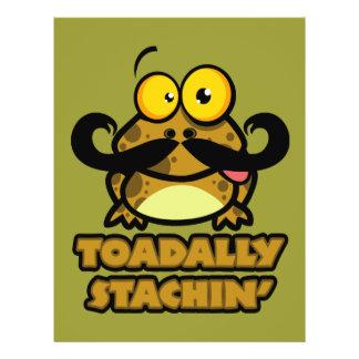 """toadally sapo divertido del stachin con un bigote folleto 8.5"""" x 11"""""""