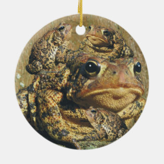 Toadly Awesome Toad Ceramic Ornament