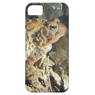 Toadly Awesome Toad iPhone SE/5/5s Case