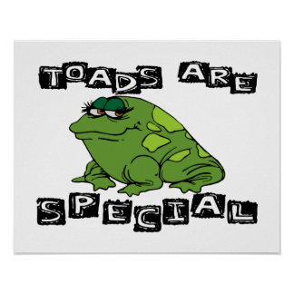 Toads Are Special Poster