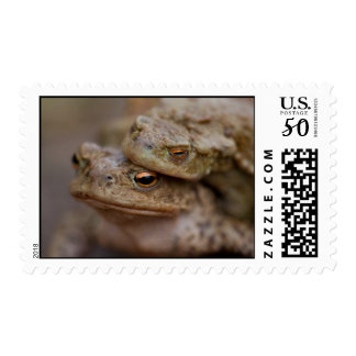 "Toads ""The Ugly Couple""	Postage Stamp"