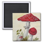 Toadstool 2 Inch Square Magnet