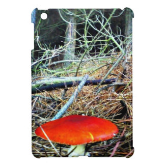 Toadstool in the woods. cover for the iPad mini