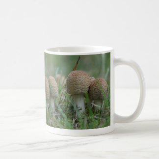 Toadstool, Mug. Coffee Mug