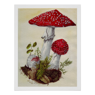 Toadstool Póster