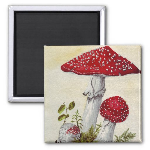 Toadstool Refrigerator Magnets