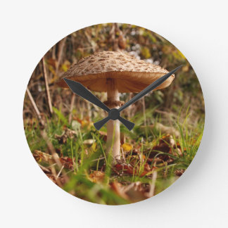 Toadstool Round Clock