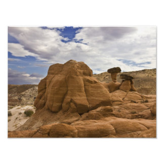 Toadstools en el desierto impresiones fotográficas