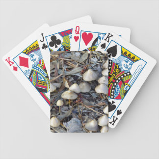 Toadstools growing on mulch bicycle playing cards