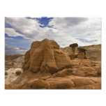 Toadstools In the Desert Photographic Print