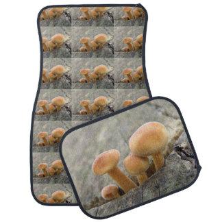 Toadstools on a Tree Trunk Car Mat Set