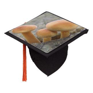 Toadstools on a Tree Trunk Graduation Cap Topper