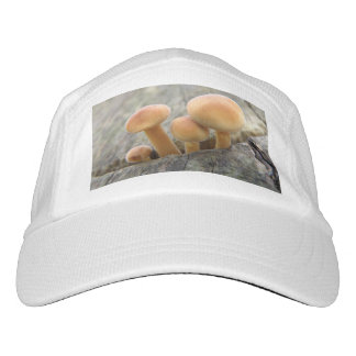 Toadstools on a Tree Trunk Performance Hat
