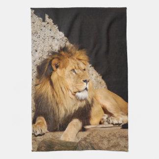 Toalla de cocina de la foto del león