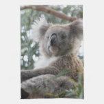 Toalla de cocina de la koala