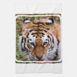 Toalla de cocina de las marcas del tigre