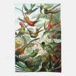 Toalla de cocina de los colibríes