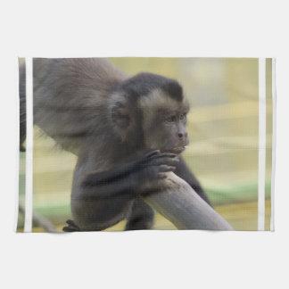 Toalla de cocina del mono del capuchón
