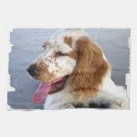 Toalla de cocina del perrito del perro de aguas de