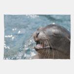 Toalla de cocina linda del león marino