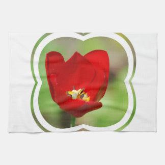 Toalla de cocina roja del tulipán