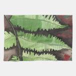 Toalla de cocina verde del helecho