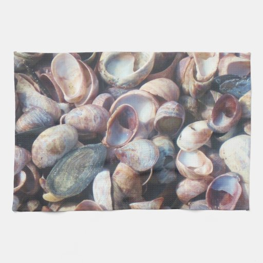 Toalla de plato de Shell