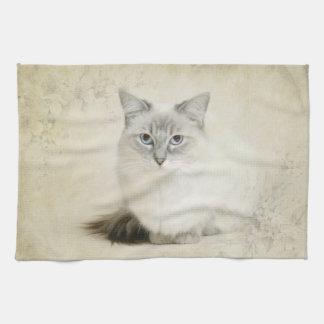 toalla del gato del ragdoll