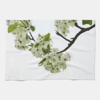 Toalla floreciente blanca de la rama de peral