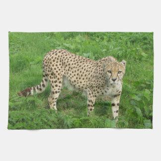 Toalla - guepardo