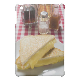 Toasted cheese sandwiches on plate, vinegar, iPad mini cases