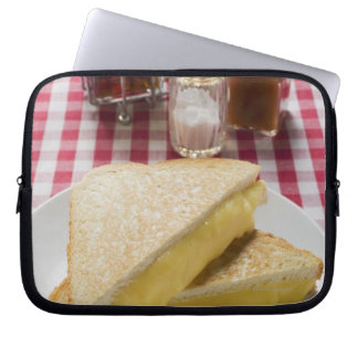 Toasted cheese sandwiches on plate, vinegar, laptop sleeve