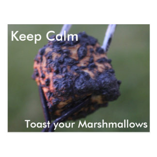 Toasty marshmallows postcard