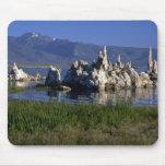 Toba volcánica del carbonato de calcio, mono lago, tapete de ratones