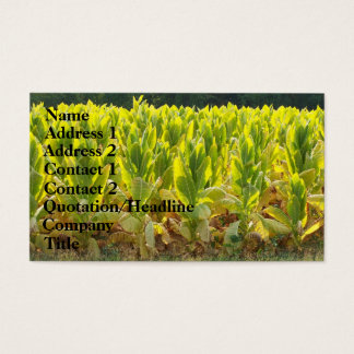 Tobacco Business Card