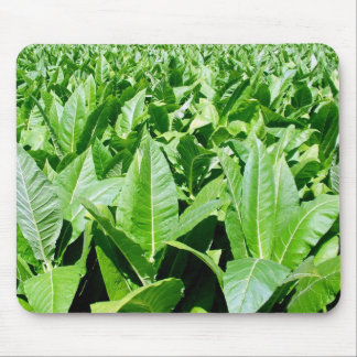 Tobacco field mouse pad