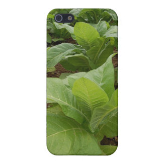 Tobacco iPhone SE/5/5s Cover