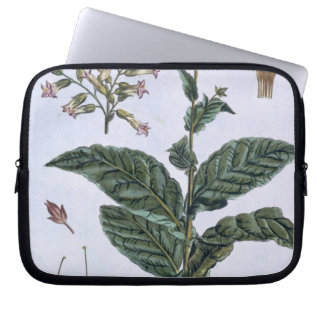 Tobacco plant, plate 7, from 'Collection Precieuse Laptop Computer Sleeves