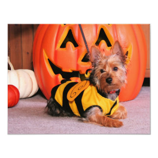 "Tobey - Silky Terrier - Hagerdern 4.25"" X 5.5"" Invitation Card"