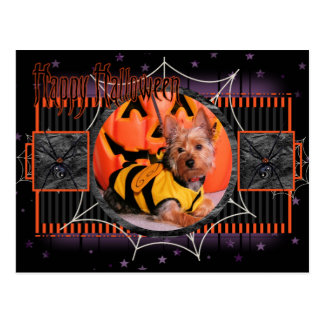 Tobey - Silky Terrier Post Cards