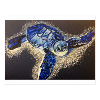Tobin la tortuga de mar del bebé tarjeta postal