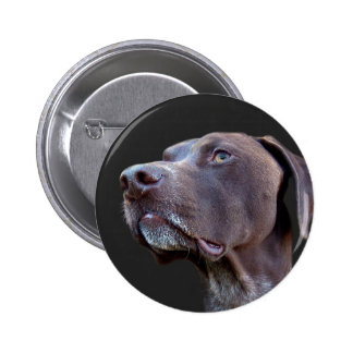 Toby Pinback Button
