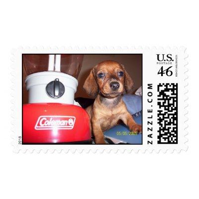 Stamps Online Mac