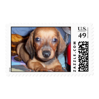 Toby Postage Stamps