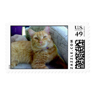 Toby the Cat postage