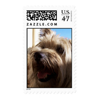 toby the terrier postage